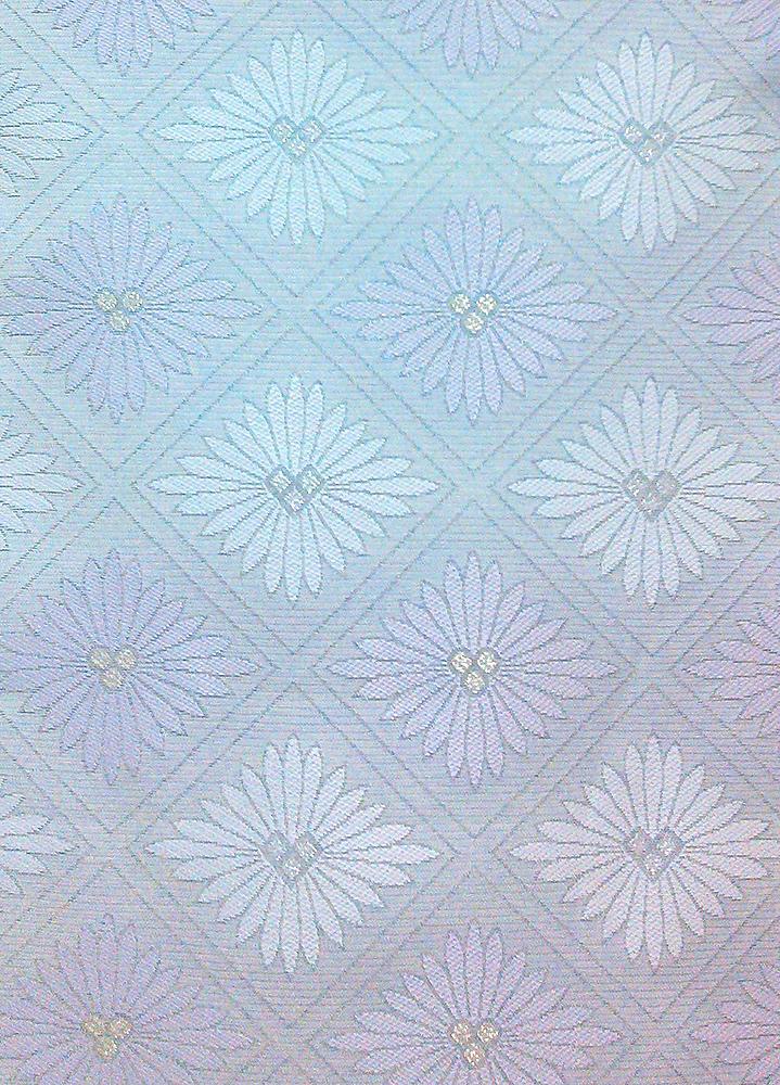 白地に菊柄の帯